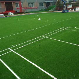 厂家直销幼儿园塑料假草皮 足球场人工草皮