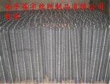 电焊网丝径2寸电焊网