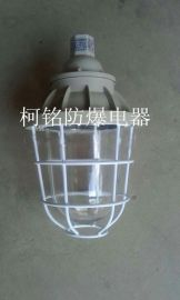 BCD-200防爆灯具LED