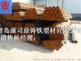 耐热铸铁棒材 耐高温铸铁型材球墨铸铁棒 山东生产厂家直销