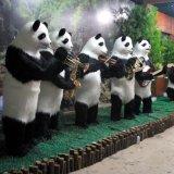 机械熊猫乐队 熊猫模型 卡通熊猫   真熊猫模型