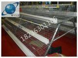 洛阳家用蛋鸡笼丨优质鸡笼丨镀锌笼具丨养鸡设备丨河南银星鸡笼厂