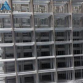 镀锌电焊网片_育苗圃网