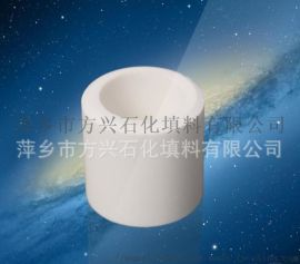 50陶瓷拉西环  耐酸耐碱陶瓷环