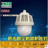 ZAD203防水防塵防震防眩燈