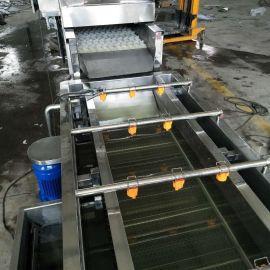火龙果专用毛辊清洗机  清洗去皮设备专业制造厂家