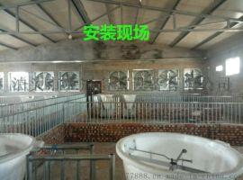 亚冠畜牧通风降温产品风机水帘 降温设备