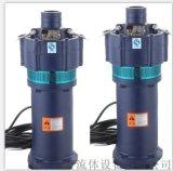 QS系列充水式潛水電泵