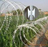 刺鋼絲圍欄-陽山刺鋼絲圍欄網-刺鋼絲圍欄網實體廠家