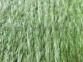 赛尔隆人造草坪,填充型赛尔隆人造草坪,赛尔隆人造草