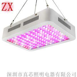 全光谱植物生长灯植物灯 深圳真芯600w植物灯