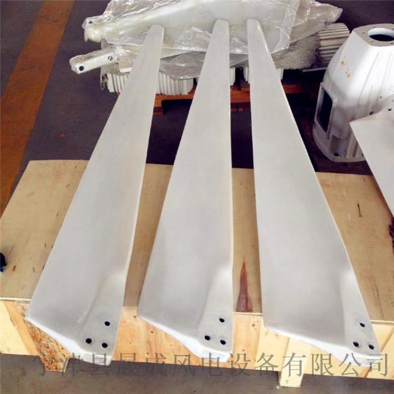 福建全铜线定子永磁同步3千瓦风力发电机生产基地