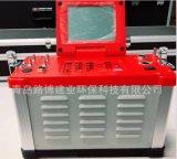 環境檢測用LB-62煙氣綜合分析儀