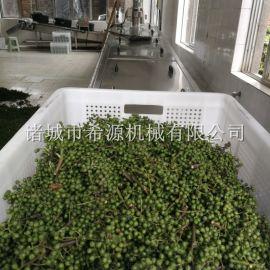 四川大型保鲜花椒杀青机 花椒清洗漂烫冷却生产线