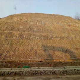 护坡钢丝网@护坡用钢丝网@护坡钢丝网厂家