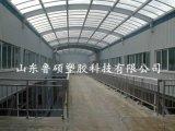 耐力板 陽光板車間採光頂 廠房採光 專用pc陽光板