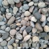 供应白色鹅卵石园林造景彩石铺路 水处理鹅卵石滤料