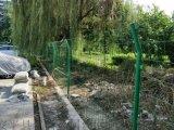 围栏网 河北围栏网 绿色焊接钢丝围栏网
