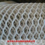 pp塑料平網,小雞牀墊塑料網,水產隔離網廠家
