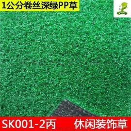 休闲装饰幼儿园仿真假草坪高尔夫绿色地毯草