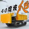 山地履帶拖拉機 履帶式貨運車 農用工程座駕履帶車