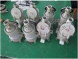 AC-16/220V 3芯16A防爆插頭工業插座