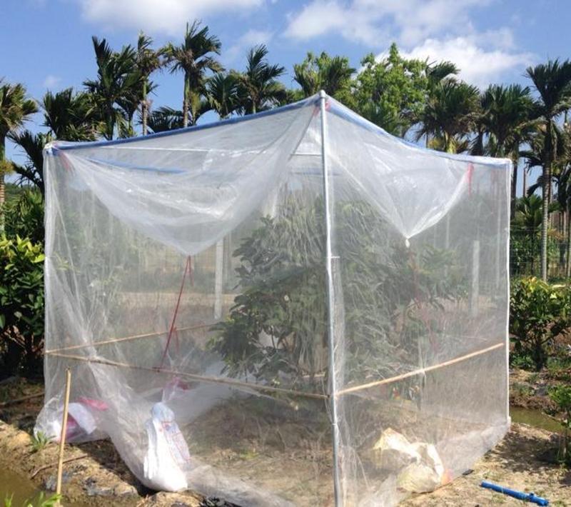 採購防蟲網,大棚防蟲網,量大從優 - 花粉隔離網40目500米