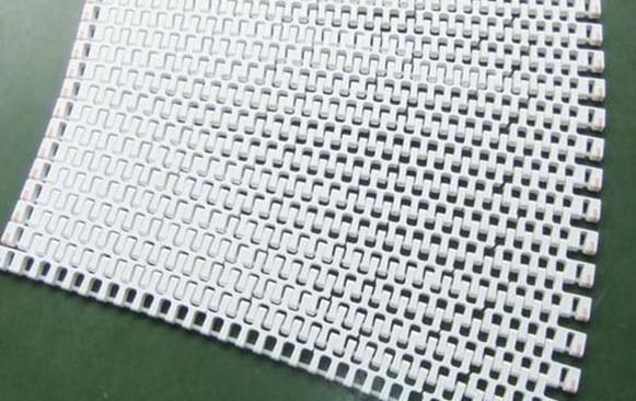塑料网带(300)