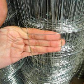 供应建筑用电焊网 朴信镀锌电焊丝网厂家定做抹墙铁丝电焊