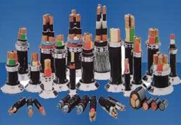 6~35KV交联聚乙烯绝缘电力电缆