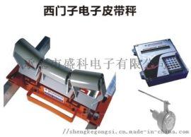 西门子皮带秤MSI型