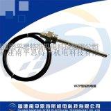 WZP测温电阻WZP-200