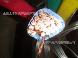 電線電纜太平洋電力廠家批發電話線網路線銅芯YJV YJV22光纜