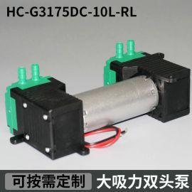 深圳HC G3175DC-10L-RL微型双头气泵