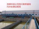 四川——養豬污水處理工程