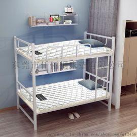 床垫 山棕垫 学生宿舍床垫