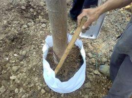 园林苗圃无纺布美植袋厂价直销 植树袋 营养钵20*25