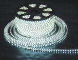 220V燈條,3582高壓燈條