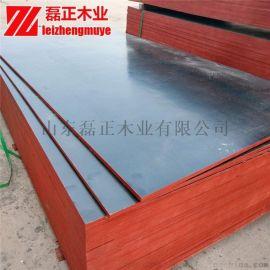 黑膜建筑模板 磊正木业 12mm防水建筑模板