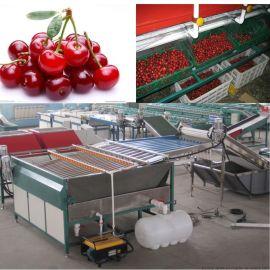 凯祥樱桃选果机,生产樱桃分选机的厂家