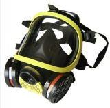 DH20154全面罩防毒面具