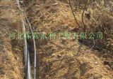 果树滴灌设备 滴灌毛管价格/供应湖南省长沙市