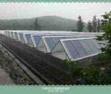 太陽能智慧溫室