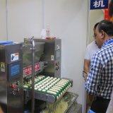 泗水新力食品机械蛋糕挤出机