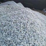 厂家批发园艺绿化装饰景观白石子 白色碎石 造景用白石子