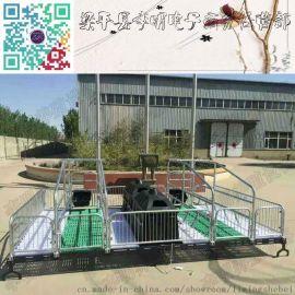 猪产床 养殖设备 母猪产床仔猪分娩栏 连体产床