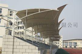 定州膜结构看台,膜结构通道,膜结构景观