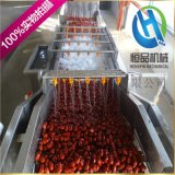 蔬菜水果高壓氣泡清洗機 大棗清洗烘幹流水線設備