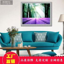 现代简约装饰画客厅办公室餐厅沙发背景墙挂画壁画有框卧室薰衣草