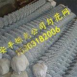边坡防护勾花网 山体滑坡防护用镀锌勾花网